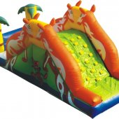 IS016 Kangaroo slide